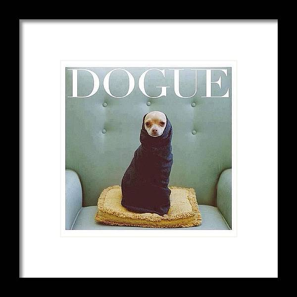 Dogue Framed Print featuring the photograph 😂😂😂😂 #dogue #vogue by Matheo Montes