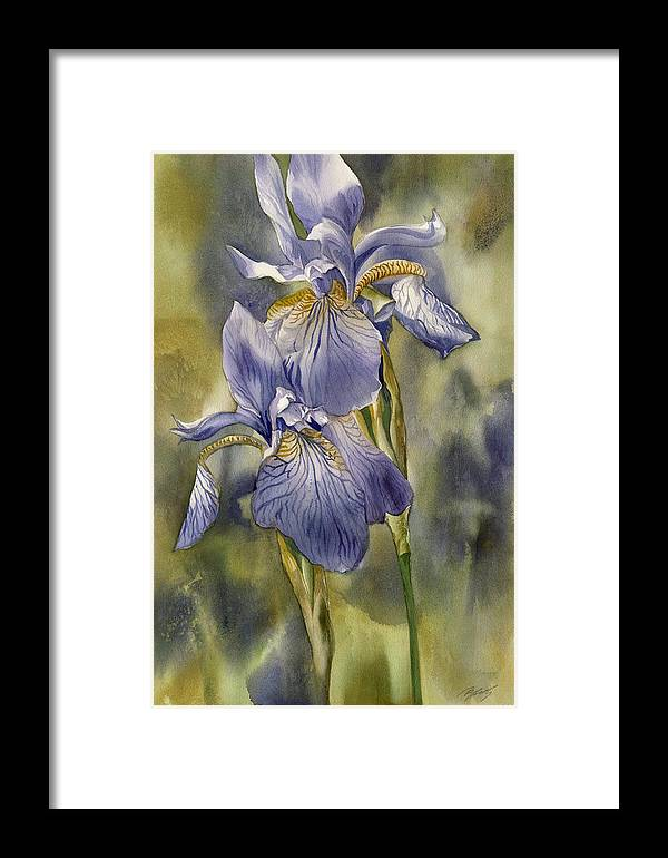 Watercolor Framed Print featuring the painting Double Blue Irises by Alfred Ng