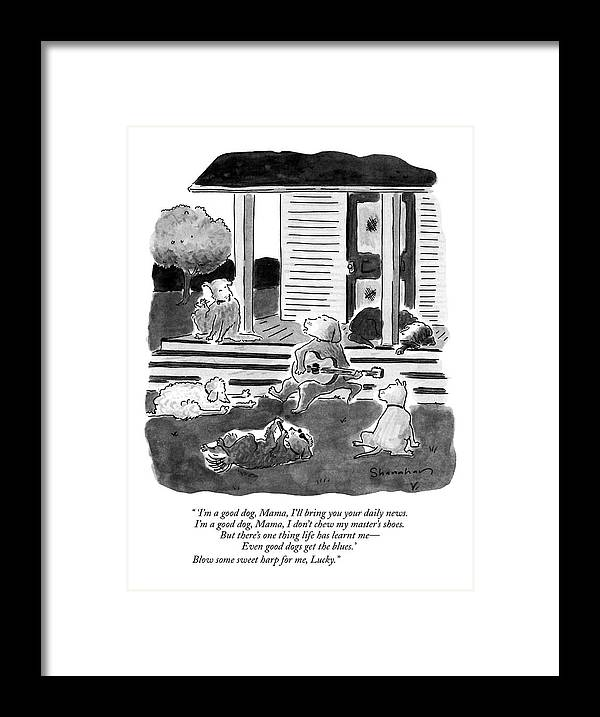 Dogs Framed Print featuring the drawing 'i'm A Good Dog by Danny Shanahan