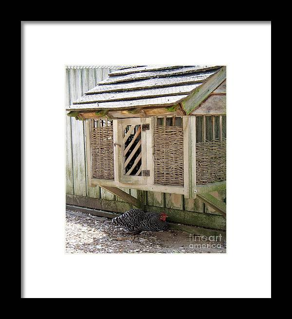 Hen Framed Print featuring the photograph Old Fashioned Chicken Coop In Colonial Williamsburg Virginia by Tanya Searcy