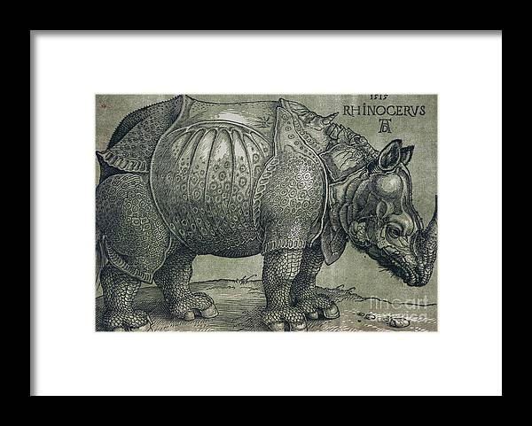 Woodprint; Rhino; Northern Renaissance; Wild; Animal; Mammal; Horn; Endangered Species; Print; Zoology Framed Print featuring the drawing The Rhinoceros by Albrecht Durer