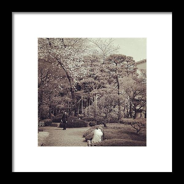 Memory Framed Print featuring the photograph 思ひ出 #tokyo #memory #cherryblossom by Tokyo Sanpopo