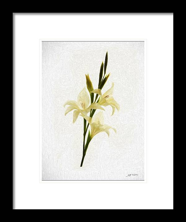 White Gladiolus Mixed Media Painting Framed Print featuring the painting White Gladiolus Mixed Media Painting by Heinz G Mielke