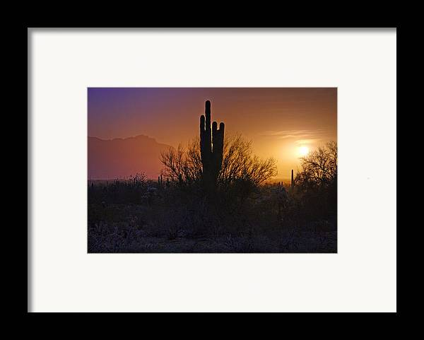 Sunrise Framed Print featuring the photograph A Sonoran Morning by Saija Lehtonen