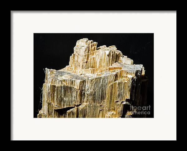 Nature Framed Print featuring the photograph Asbestos by Millard H. Sharp