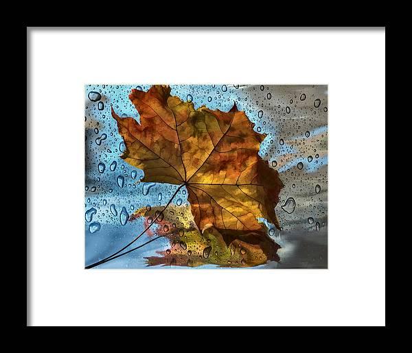 Still Life Framed Print featuring the photograph Autumn Fantasy by Vladimir Kholostykh