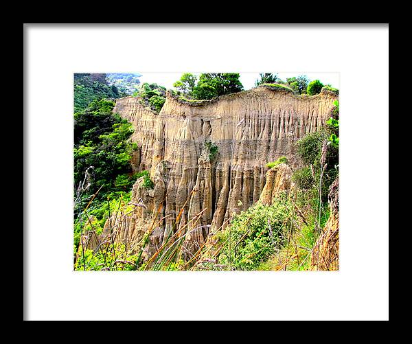 Gore Bay Framed Print featuring the photograph Cathedral Gully by Joyce Woodhouse