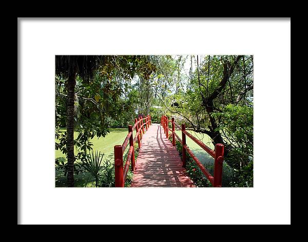 Framed Print featuring the photograph Charleston Red Bridge by Brian OSullivan