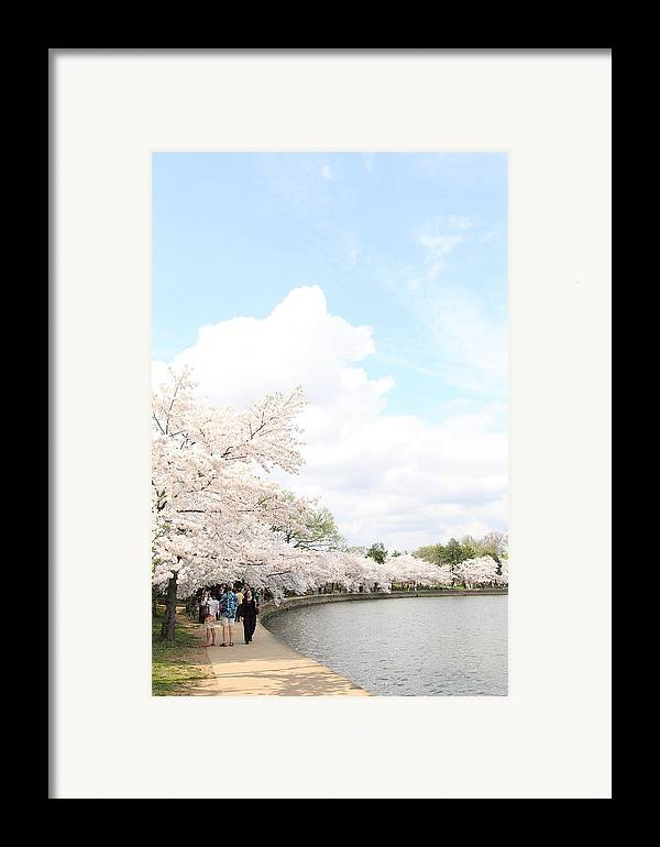 America Framed Print featuring the photograph Cherry Blossoms - Washington Dc - 01131 by DC Photographer