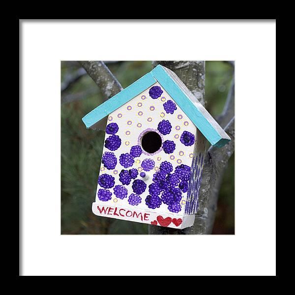 Birdhouse Framed Print featuring the photograph Cute Little Birdhouse 1 by Carol Leigh