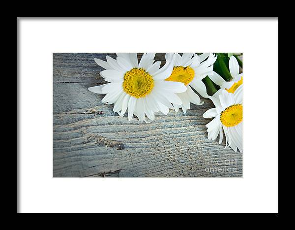 Abstract Framed Print featuring the photograph Daisies by Mythja Photography