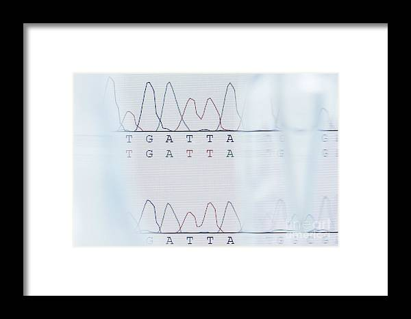 Dna Framed Print featuring the photograph Dna Sequencing by GIPhotoStock