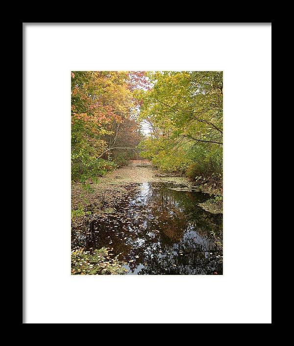 Landscape Framed Print featuring the photograph Fall Reflections by Shelly Maritzer-Lawrence