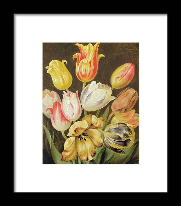 Blumenstuck Framed Print featuring the painting Flower Study by Johann Friedrich August Tischbein