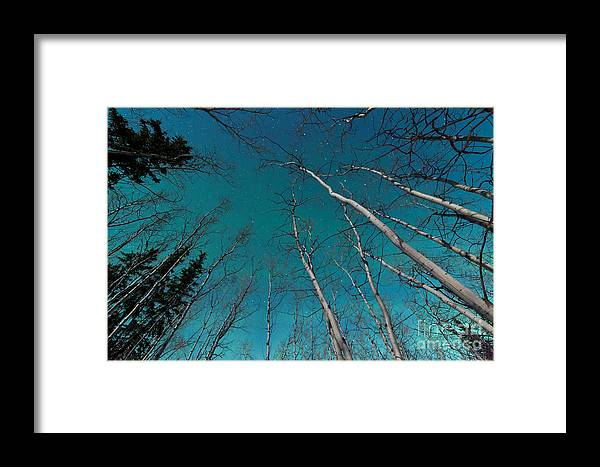 Above Framed Print featuring the photograph Green Swirls Of Northern Lights Over Boreal Forest by Stephan Pietzko