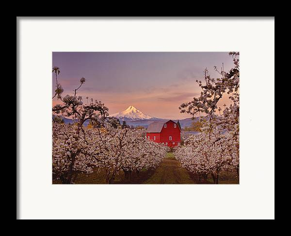 Sunrise Framed Print featuring the photograph Hood River Sunrise by Darren White