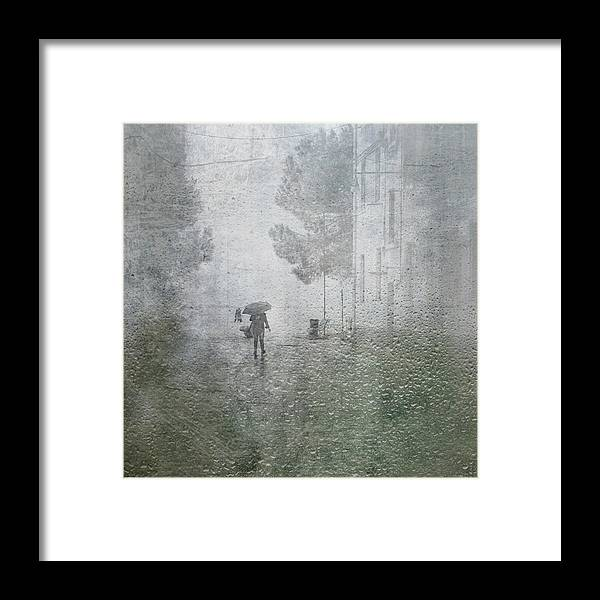 Rain Framed Print featuring the photograph It's Raining by Anette Ohlendorf
