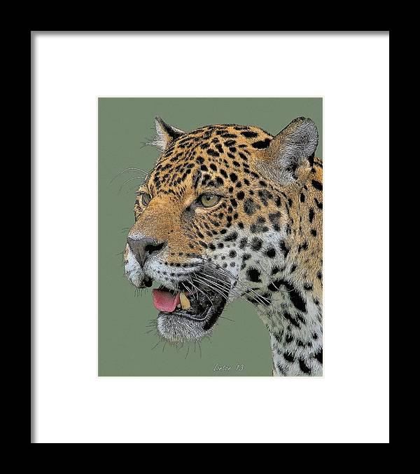 Jaguar Framed Print featuring the digital art Jaguar Portrait by Larry Linton