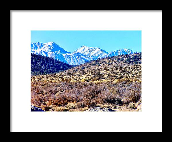 Sky Framed Print featuring the photograph Landscape by Marilyn Diaz