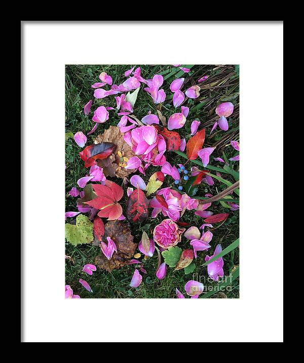 Roses Framed Print featuring the photograph Last Glimpse Of Summer by Monika A Leon