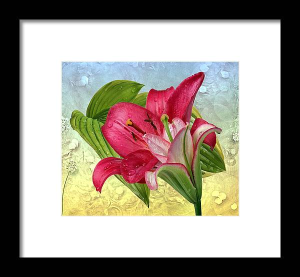 Lily Framed Print featuring the photograph Lilies by Manfred Lutzius
