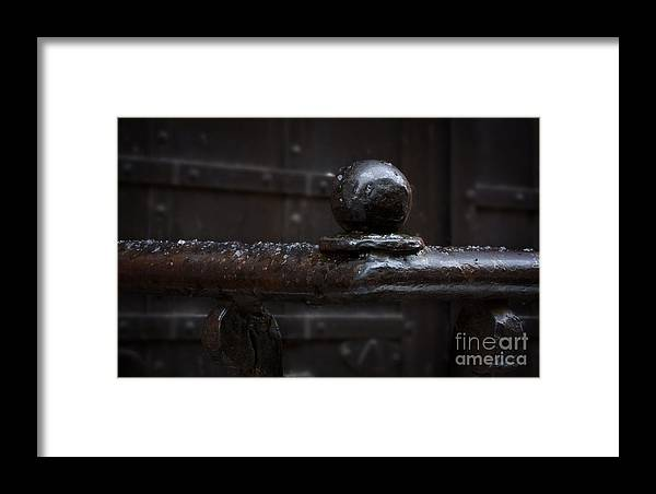 Metal Fence Fragment Framed Print featuring the photograph Metal Fence Fragment by Jolanta Meskauskiene