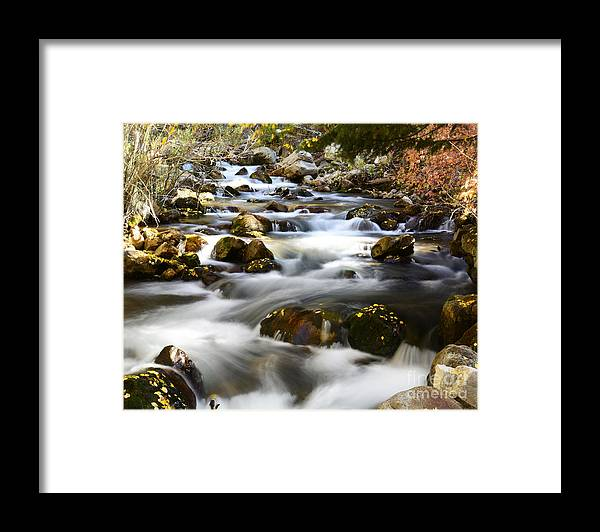 Places Framed Print featuring the photograph Mountain Stream in Fall by Dennis Hammer