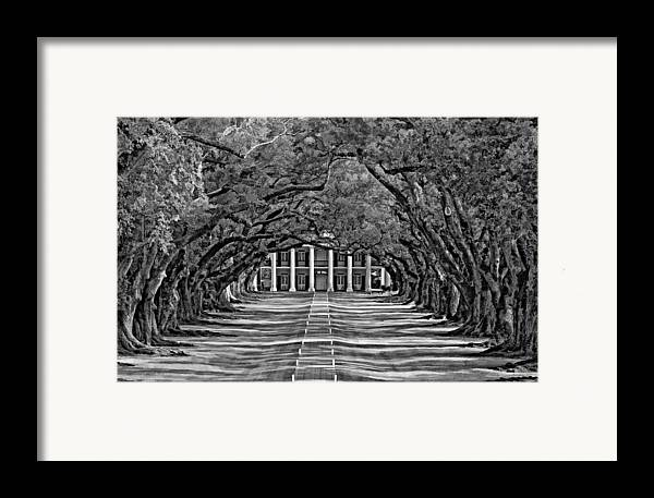 Oak Alley Plantation Framed Print featuring the photograph Oak Alley Bw by Steve Harrington