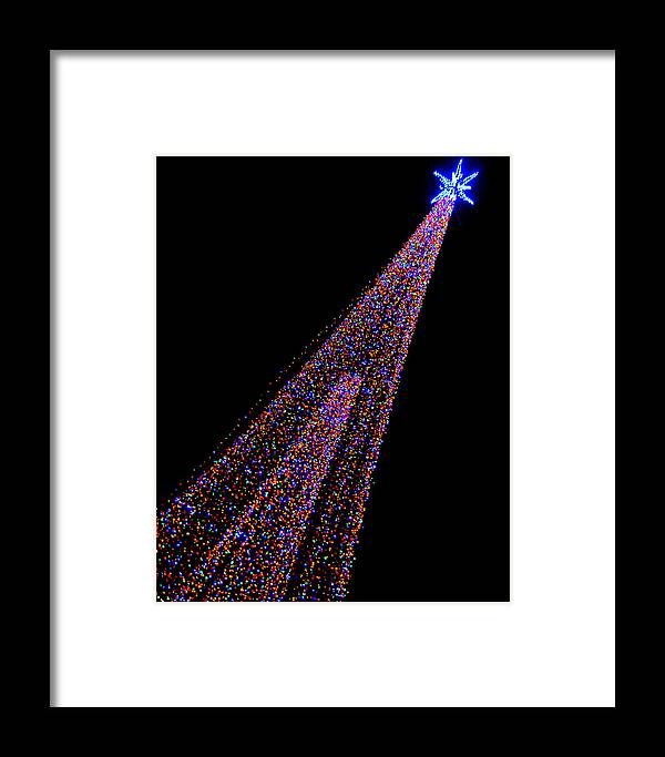 Collections By Carol Framed Print featuring the photograph Oh Christmas Tree... by Carol Toepke