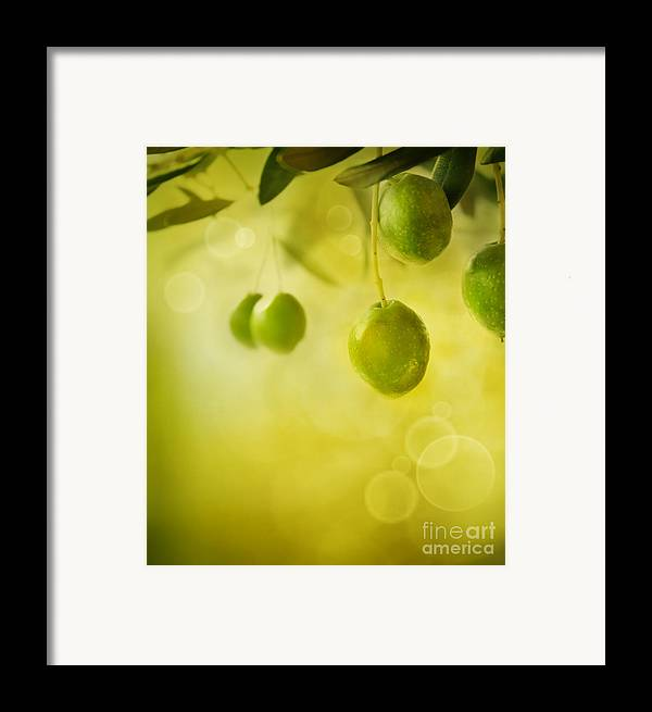 Aged Framed Print featuring the photograph Olives Design Background by Mythja Photography