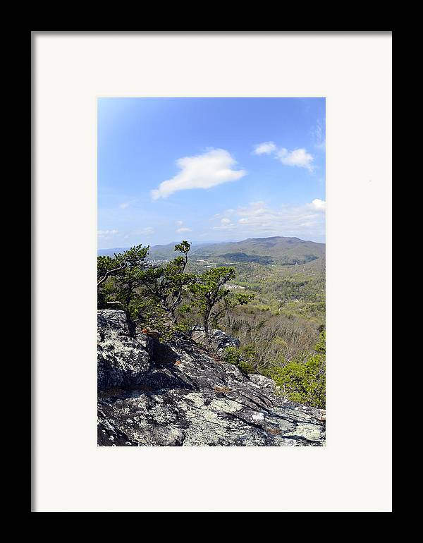Nature Framed Print featuring the photograph On The Edge by Susan Leggett