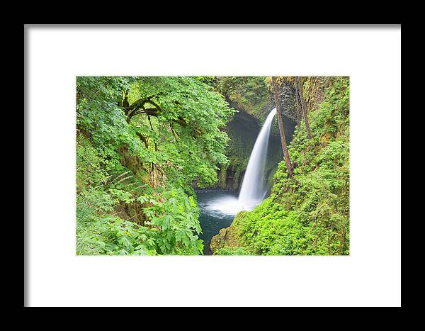 Columbia River Gorge Framed Print featuring the photograph Oregon, Columbia River Gorge National by Jamie and Judy Wild