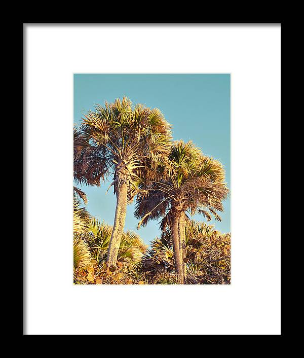 Swflsunsetscenery Framed Print featuring the photograph Palms by Tracy Barnard