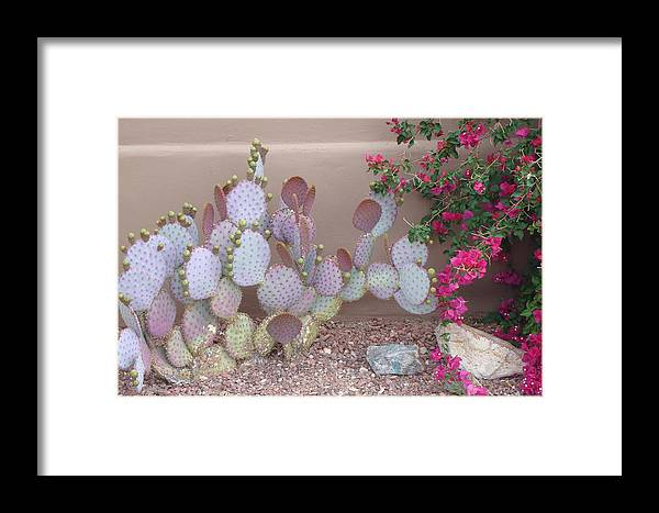 Prickly Pear Framed Print featuring the photograph Prickly Pear by Susan Woodward