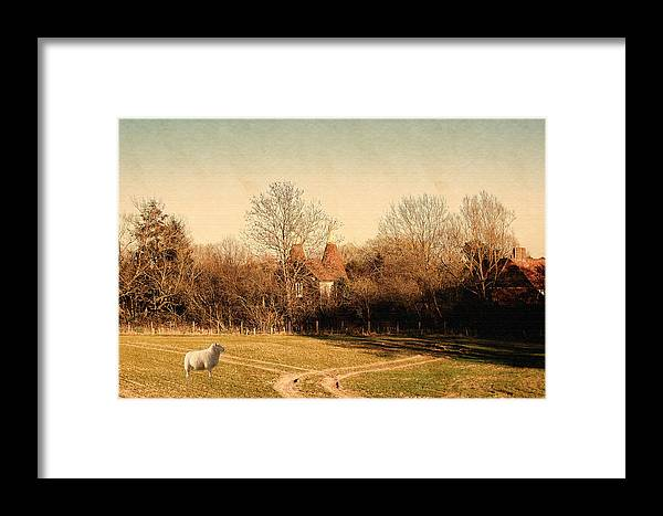 English Landscape Framed Print featuring the photograph Rural England by Sharon Lisa Clarke