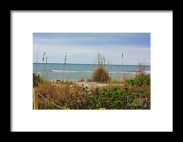 Handsome Framed Print featuring the photograph Sea Oats by Chuck Hicks