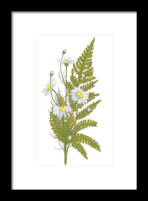 Flowerbed Framed Print featuring the digital art Set Of Chamomile Daisy Bouquets White by Olga Ivanova