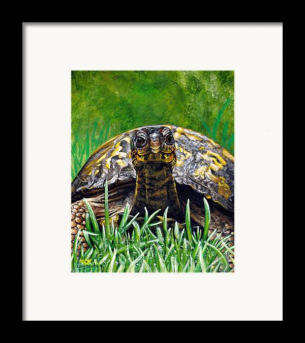 Turtle Framed Print featuring the painting Smile by Cara Bevan