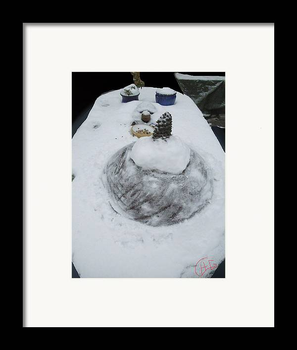 Colette Framed Print featuring the photograph Snow Fall Serie December 2012 by Colette V Hera Guggenheim