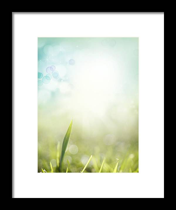 Abstract Framed Print featuring the photograph Springtime by Les Cunliffe