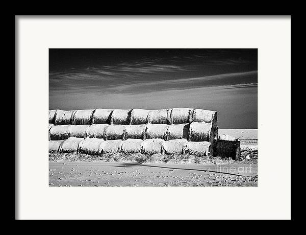 Stack Framed Print featuring the photograph stack of frozen snow covered hay bales in a field Forget Saskatchewan Canada by Joe Fox