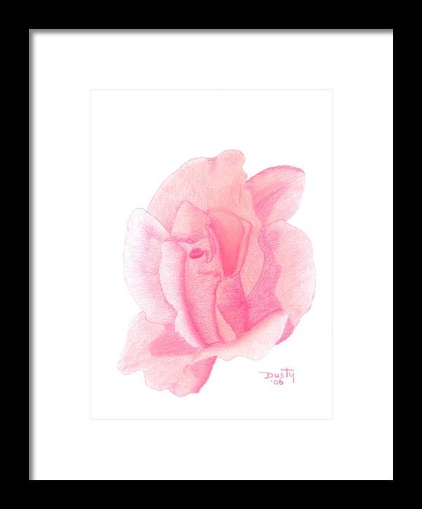 Rose Framed Print featuring the drawing Strawberry Shortcake by Dusty Reed