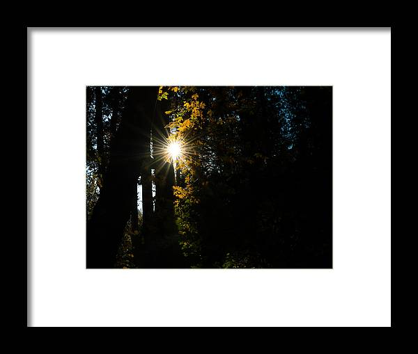 Sun Framed Print featuring the photograph Sun Rays by Chakravarthy Kotaru
