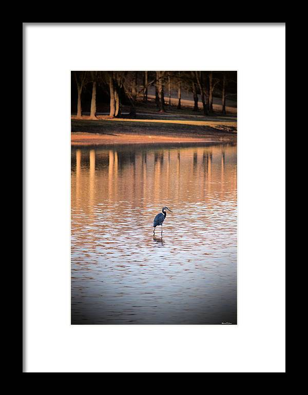 Sunset On The Lake Framed Print featuring the photograph Sunset On The Lake by Maria Urso