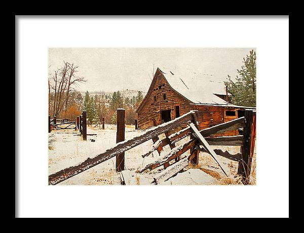 Barns Framed Print featuring the photograph Surviving The Elements by Donna Kennedy
