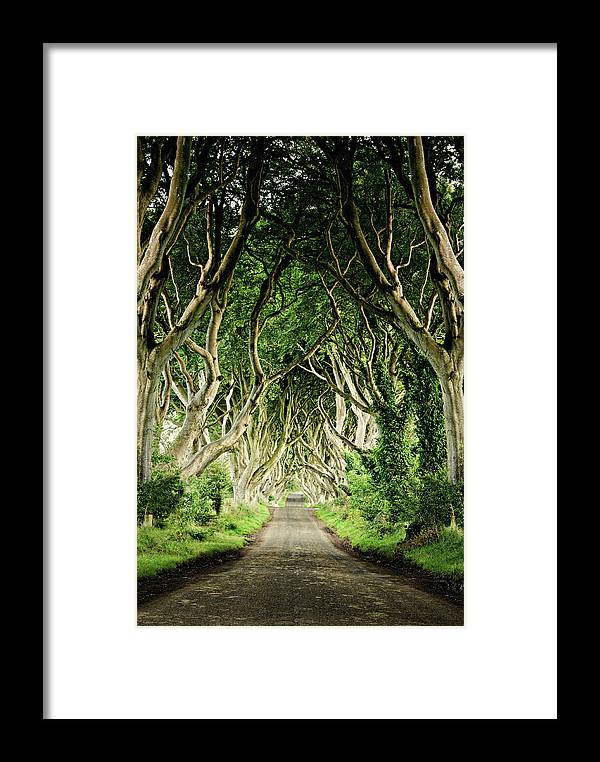 Tranquility Framed Print featuring the photograph The Dark Hedges by Michelle Mcmahon