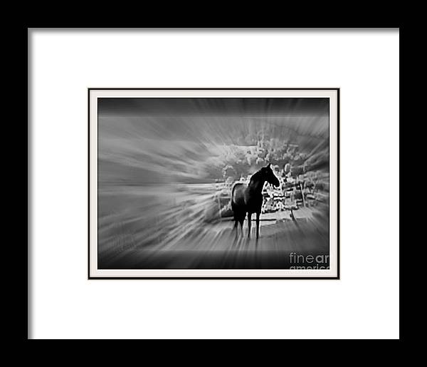 Horse Racing Framed Print featuring the digital art The Rhythms Of Life by Meiers Daniel