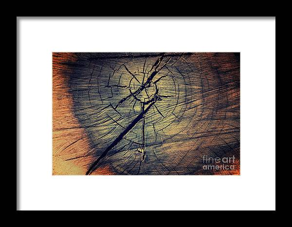 Abstract Framed Print featuring the photograph Tree Texture Background by Mythja Photography