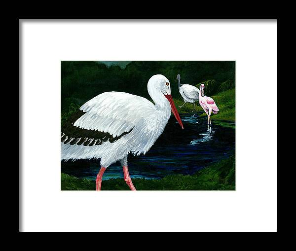Pink Spoon Bill Framed Print featuring the painting Tropical Birds by Carlene Salazar