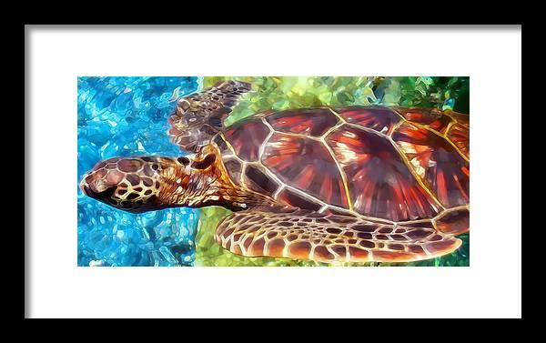 Hawaii Framed Print featuring the photograph Turtle 1 by Dawn Eshelman